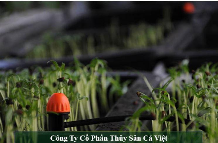 Top 10 Cửa hàng thiết bị nông nghiệp Ninh Kiều Cần Thơ