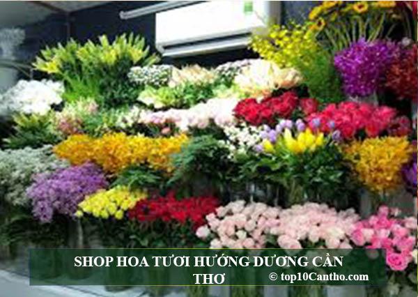 Top 10 Shop hoa đa chủng loại hoa tươi Ninh Kiều Cần Thơ